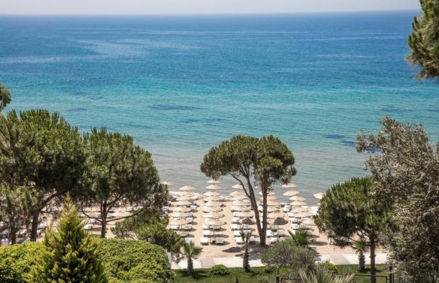 фотографии Aria Claros Beach & Spa Resort (ex. Onyria Claros Beach & Spa Resort; Carpe Diem) изображение №28