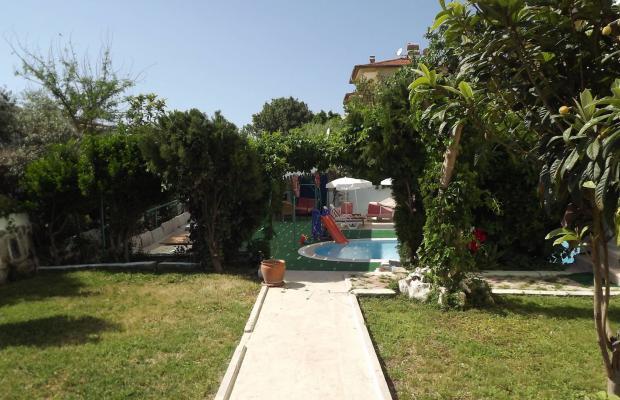 фотографии отеля Albora изображение №23