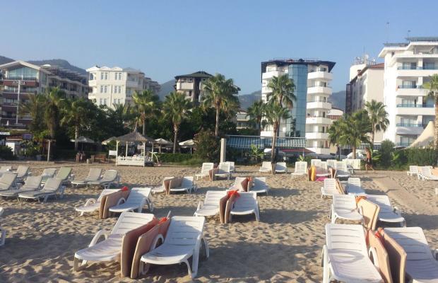 фотографии отеля Elysee Beach изображение №3