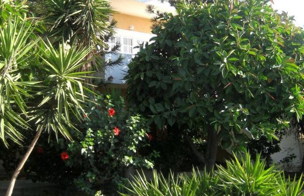 фото Corina Apartments изображение №2