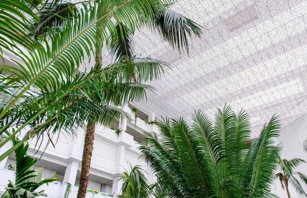 фото Spring Hotel Vulcano изображение №10