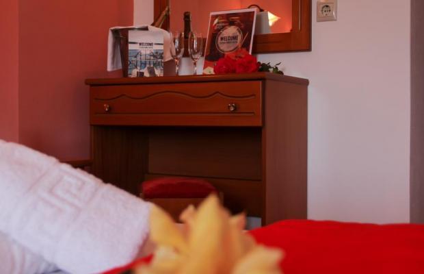 фото Papagalos изображение №6