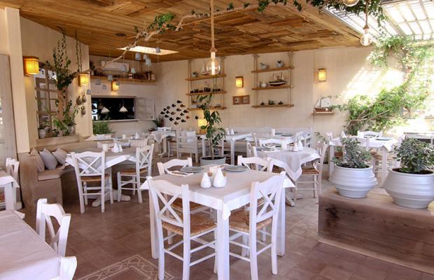 фотографии Medousa Apartments & Taverna изображение №16