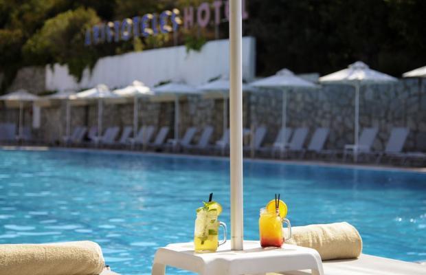 фото отеля Aristoteles Holiday Resort & Spa изображение №17