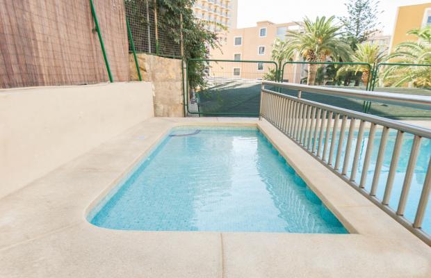 фотографии отеля Palm Court изображение №7
