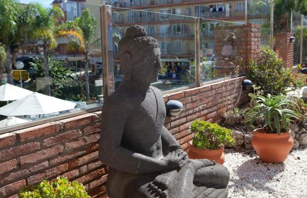 фотографии отеля H-Top Palm Beach & SPA (ex. Ancla)   изображение №15