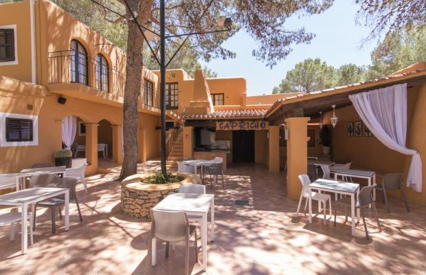 фотографии отеля AzuLine Club Cala Martina Ibiza (ex. AzuLine Club Punta Arabi) изображение №23
