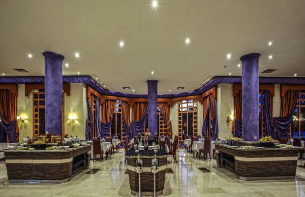 фотографии Palm Plaza Hotel & Spa изображение №36