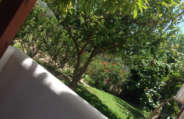 фото отеля Triantafillas изображение №9