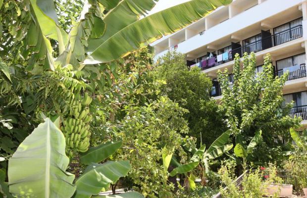 фото отеля Veronica изображение №5