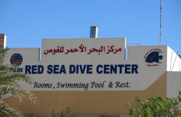фотографии Red Sea Dive Center изображение №4