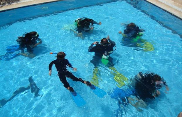 фотографии отеля Red Sea Dive Center изображение №3
