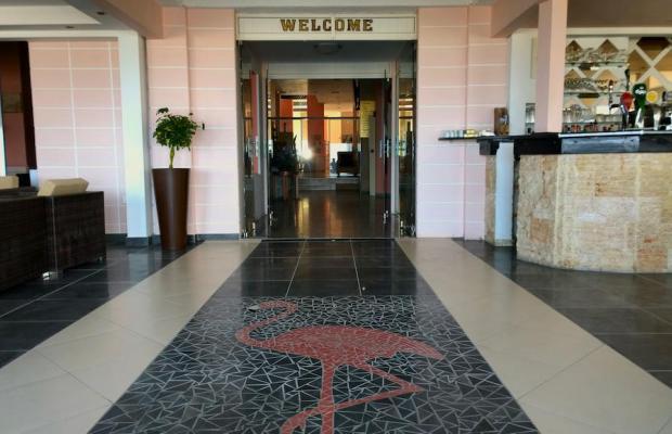 фото отеля Flamingo Beach изображение №13